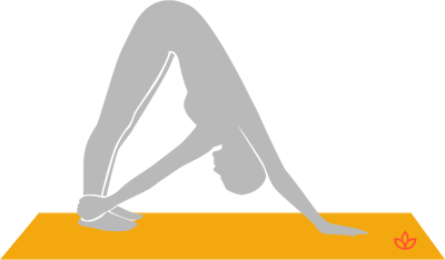 Revolved Downward-Facing Dog Pose.png