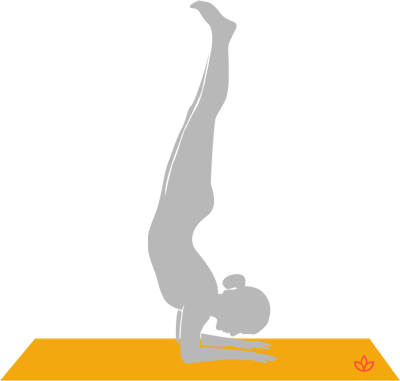Forearm Stand.png